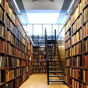 Библиотеки Волчихи